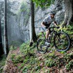 Fahrrad Scott 3
